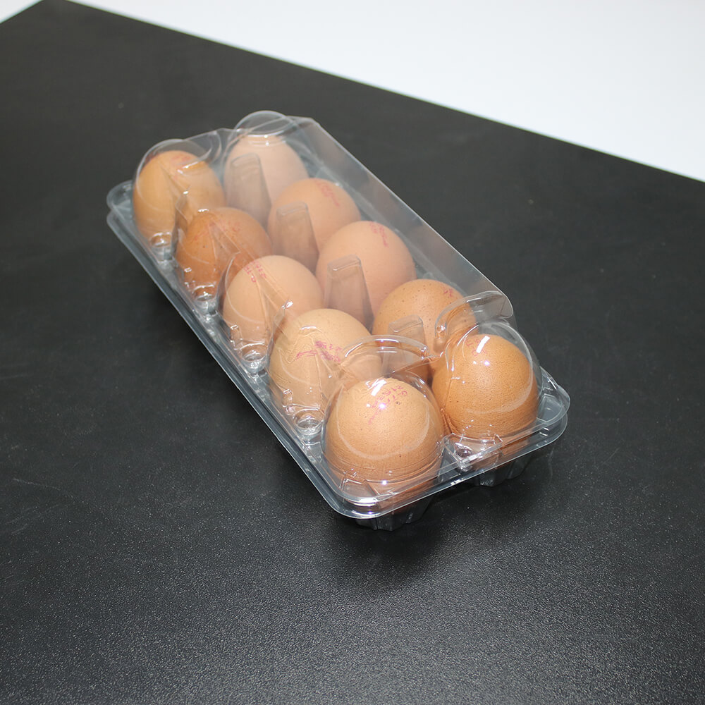 10 Transparent Egg Package