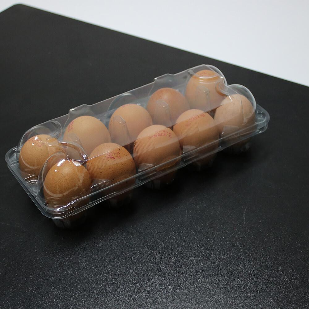 10 Transparent Egg Package Jumbo
