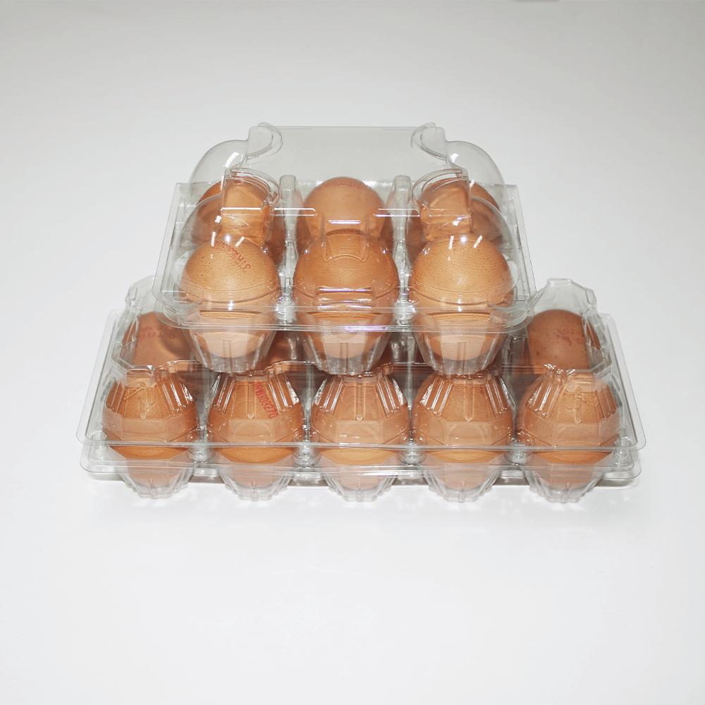 6 Transparent Egg Package